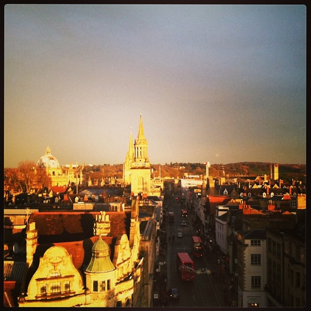 View of Oxford from Carfax Tower - 2013 by Michelle Philippon