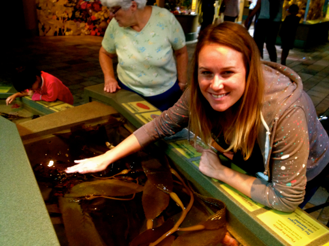 10 Facts You Didn't Know About Sea Life Before Visiting the Monterey Bay Aquarium