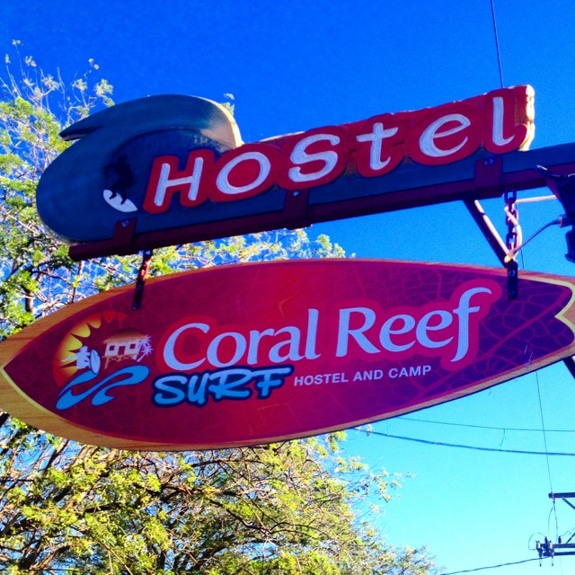 Where to Stay in Tamarindo, Costa Rica: Coral Reef Surf Hostel
