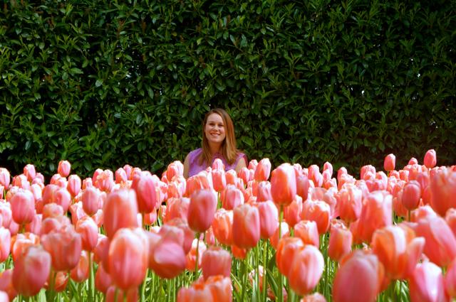Lauren Salisbury visits pink tulips at Keukenhof Gardens