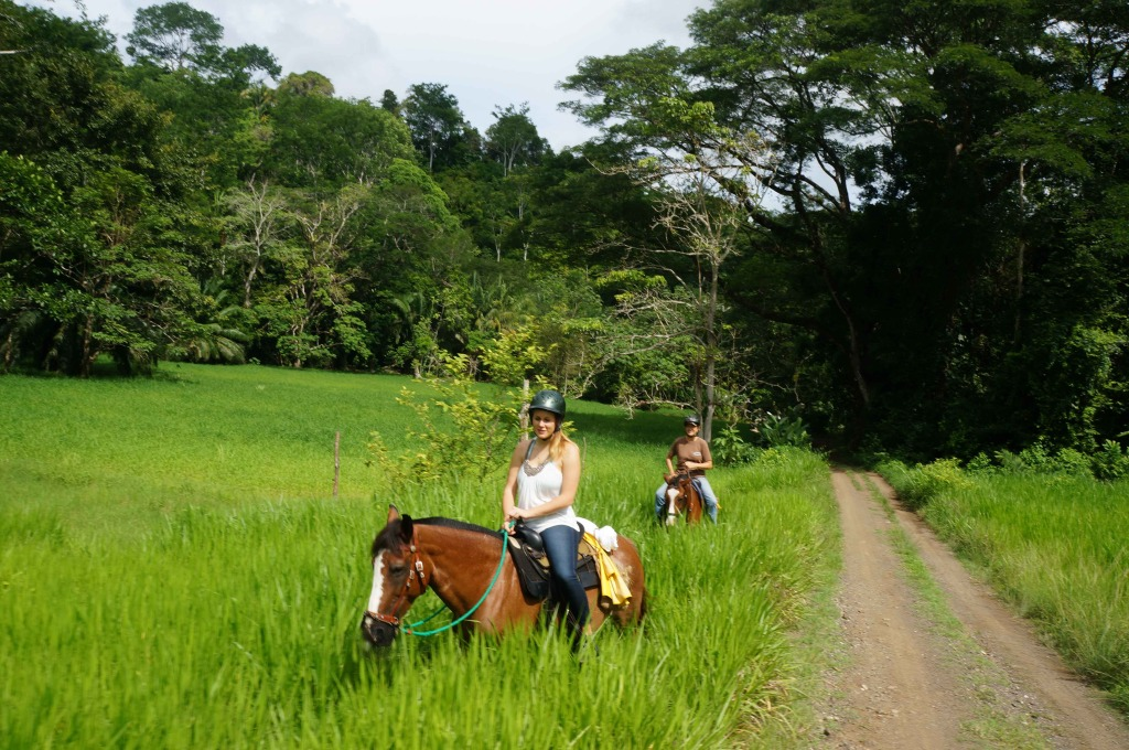 Discovery Horseback Tours 13