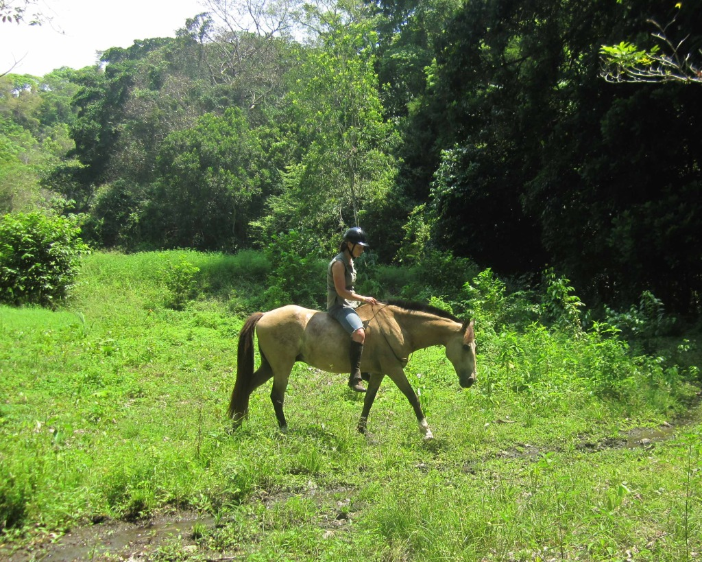 horseback riding vacations in costa rica