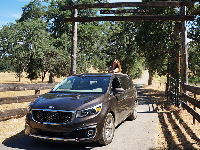 kia sedona ultimate road trip vehicle 1