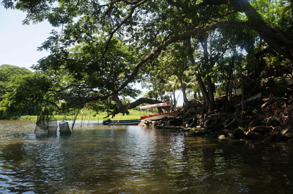 lake nicaragua nets for refrigerators