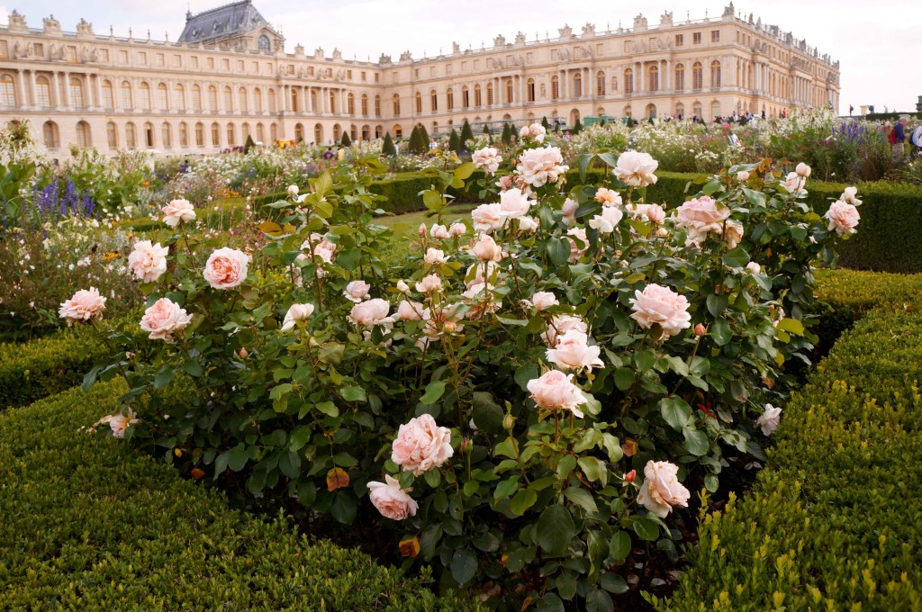 reasons to love france versailles