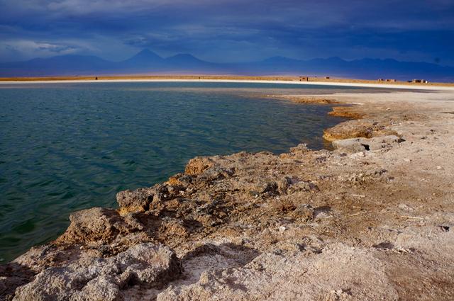 Laguna Cejar Salt Lake